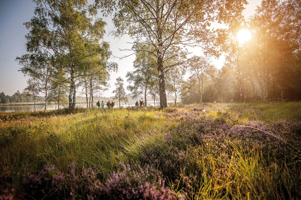 Bad Wurzach Morgenstimmung am Riedsee
