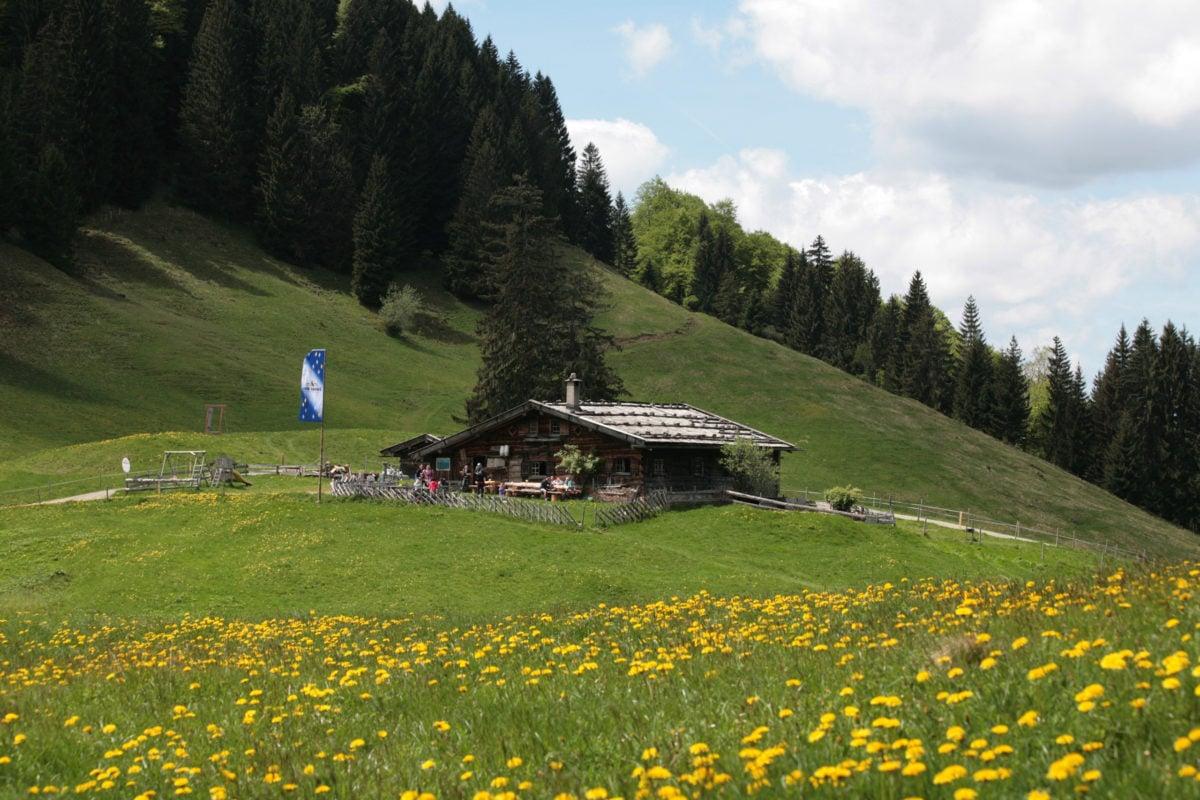 Blick auf Alpe Gschwenderberg