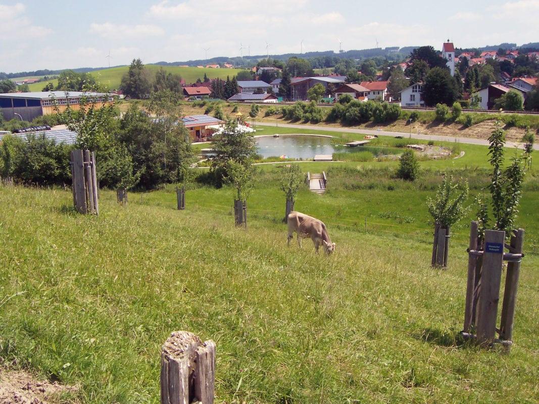 Blick auf Wildpoldsried