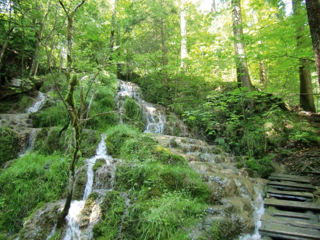 Görisried Naturlehrpfad