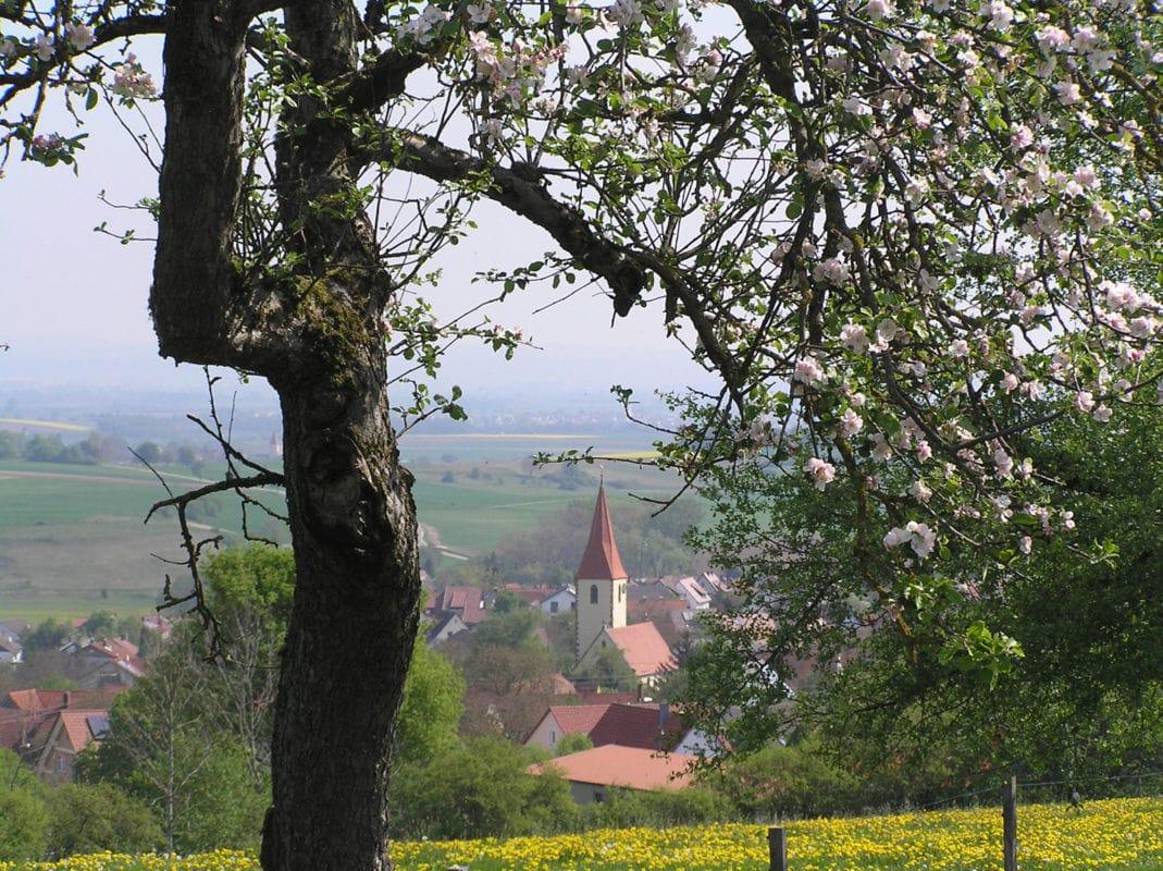 Kirchheim am Ries (Ortsansicht)