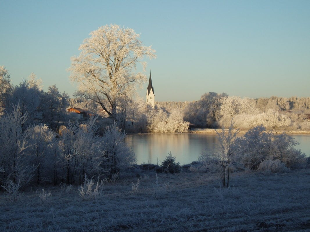 Wald Kirchturm Winter