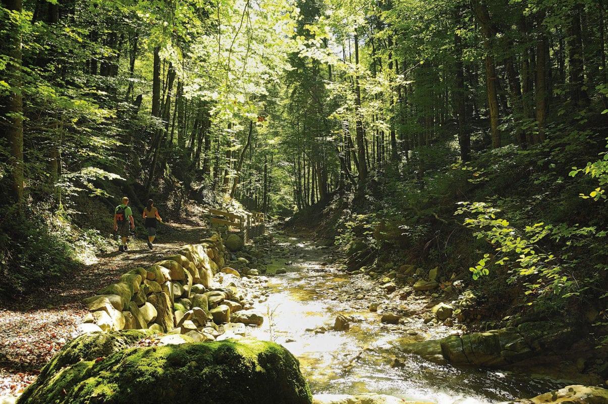 Waltenhofen Wasserfallweg